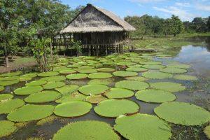 Estos son los destinos imperdibles en Colombia para 2019