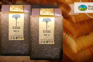 En subasta mundial, café santandereano se convirtió en el mejor pago