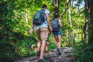 Ecoturismo en Colombia: una gran oportunidad económica y cultural