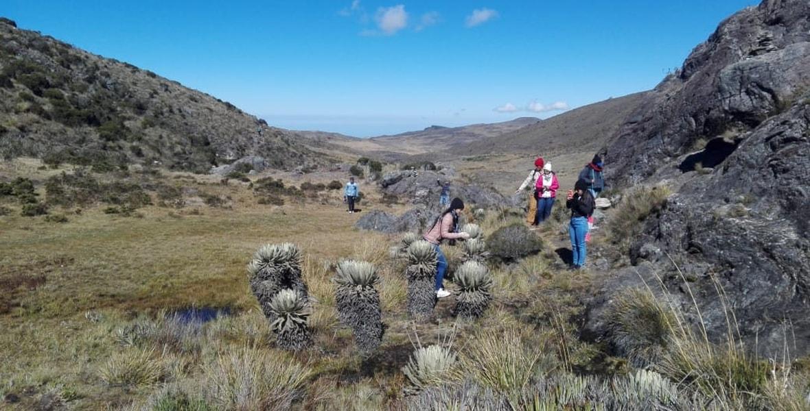 Observación de flora en el Páramo