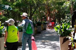 Parque El Gallineral se prepara para volver a funcionar
